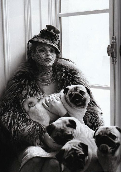 The Duchess. client: Vogue Italia. published: June 2008.  Steven Meisel - Photographer . Linda Evangelista - Model. Andrew Richardson - Editor