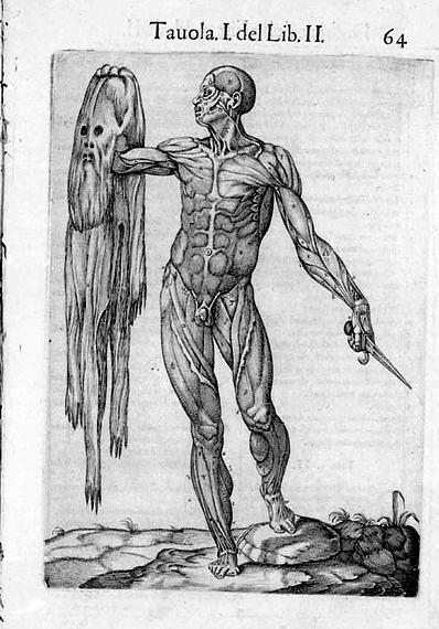 """Рисунок из итальянской книги XV века \""""Анатомия человеческого тела\"""", человек, снимающий с себя кожу и демонстрирующий систему своих мышц."""