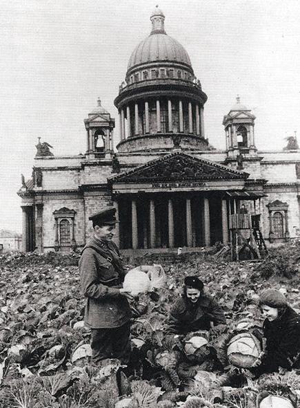 Огород перед Исаакиевским Собором, 1942 год.