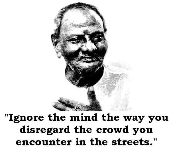 Подпись под фото: Игнорируйте ум так же, как вы равнодушны к толпе, с которой сталкиваетесь на улицах