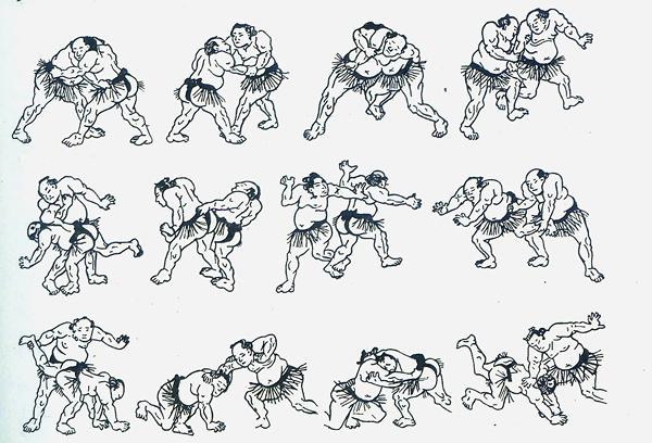 Формы японского сумо