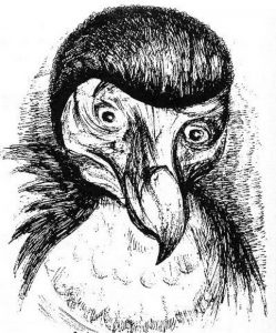 Анри Волохонский в образе птицы Додо. Рисунов Акселя