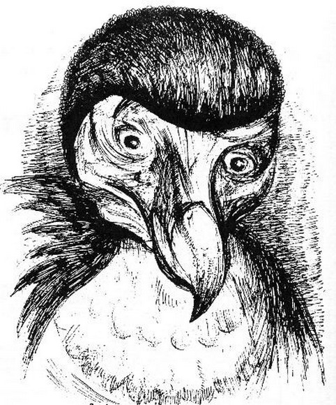 Анри Волохонский в образе птицы Додо. Рис. Акселя
