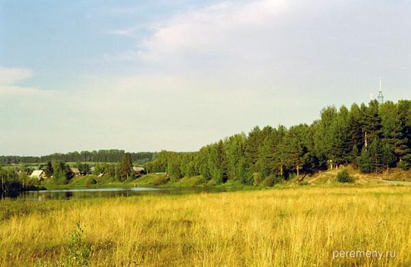 Местность, куда пришел Леонид и сейчас довольно болотиста. Справа Туринская гора, над ней виднеется шпиль колокольни Введенской церкви. Фото Олега Давыдова