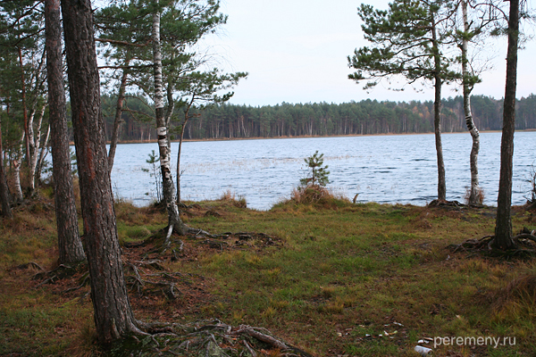Ласковское озеро под Солотчей. Фото Олега Давыдова