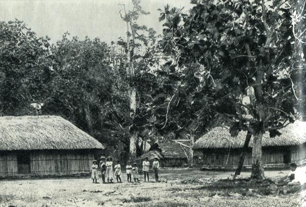 19.  Большинство туземцев жило в старинных овальных хижинах: глухие стены из бамбука, крыша из сплетенных листьев пандануса или кокосовой пальмы.