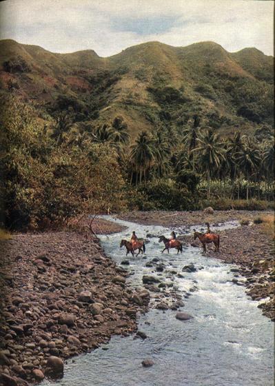80.                     На Маркизских островах нет дорог, нет мостов, и все, от епископа до самого маленького туземного карапуза, путешествуют верхом. Но после ливня речки становятся такими бурными, а тропы настолько скользкими, что даже маркизским лошадям трудно пробраться из долины в долину.