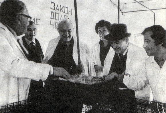 Горбачев и Шеварднадзе. Грузия, 1982