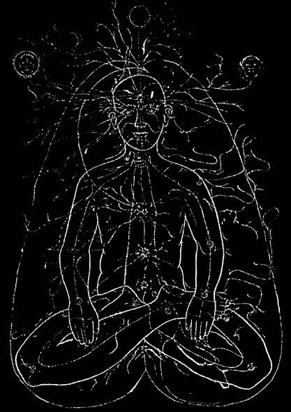 Брахманда - аура - кокон. Согласно утверждениям некоторых практикующих адептов, так выглядит человек для видящего энергетические поля, каналы, центры (чакры), связи с внешним миром выходящие за пределы кокона. На этом изображении хорошо видно не только иноматериальное тело человека, но и проявившиеся в контакте с ним прочие иноматериальные объекты.
