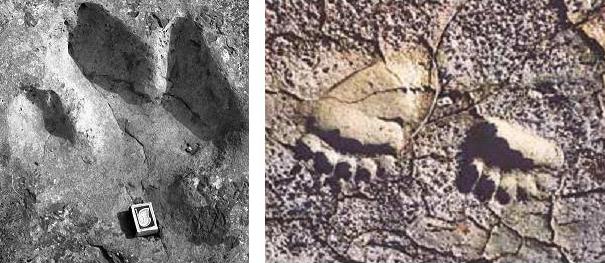 Следы человека на глине