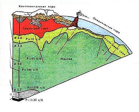 Континентальная кора