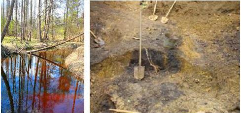 ржавцы и болотные руды