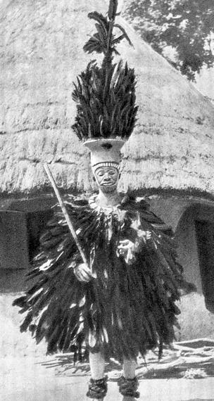 Человек-птица (Лесная Гвинея)