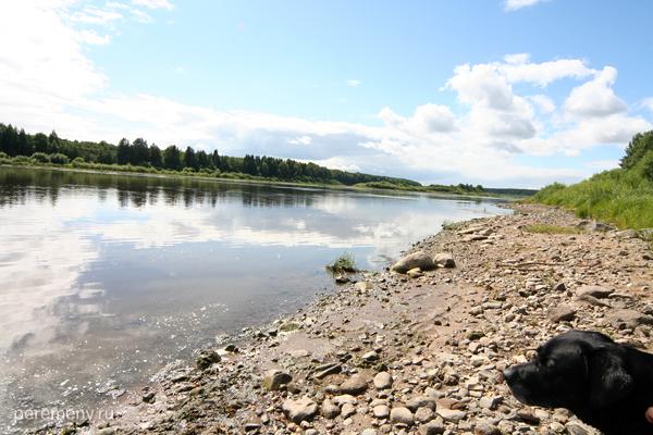 Река Сухона. Фото: Олег Давыдов
