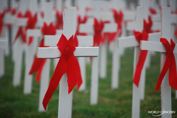world-aids-day-crosses1