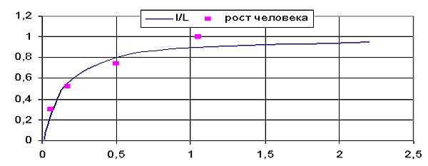 Рис. 1. Сравнение относительных размеров человека с начала эмбрионального развития и до физически зрелого состоянии с турбулентной моделью (автор)