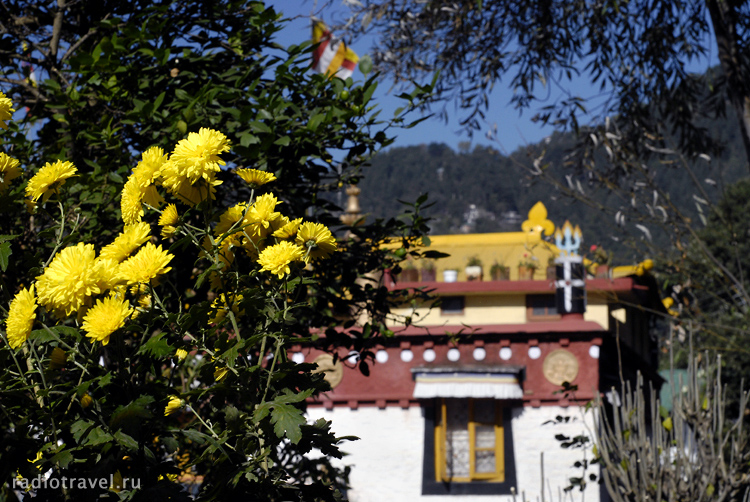 Дарамсала, буддийский монастырь