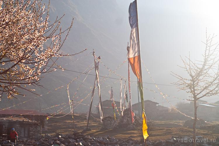 дзен по-непальски - Лангтанг