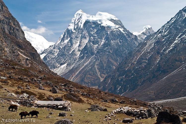 Лангтанг, Непальский трек