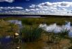 Приморск, поселок Балтийское