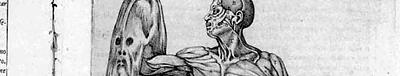 Анатомия героя