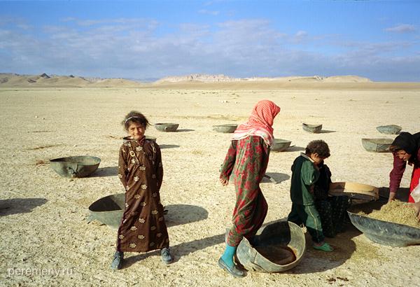 Секс у бедуинов