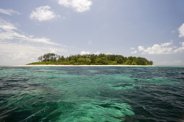 Outer Coral Island_Chris Close