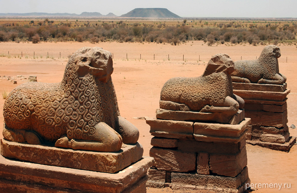 Похоже, древние суданцы поклонялись овцам